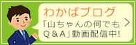 わかばブログ 「山ちゃんの何でも Q&A」動画配信中!